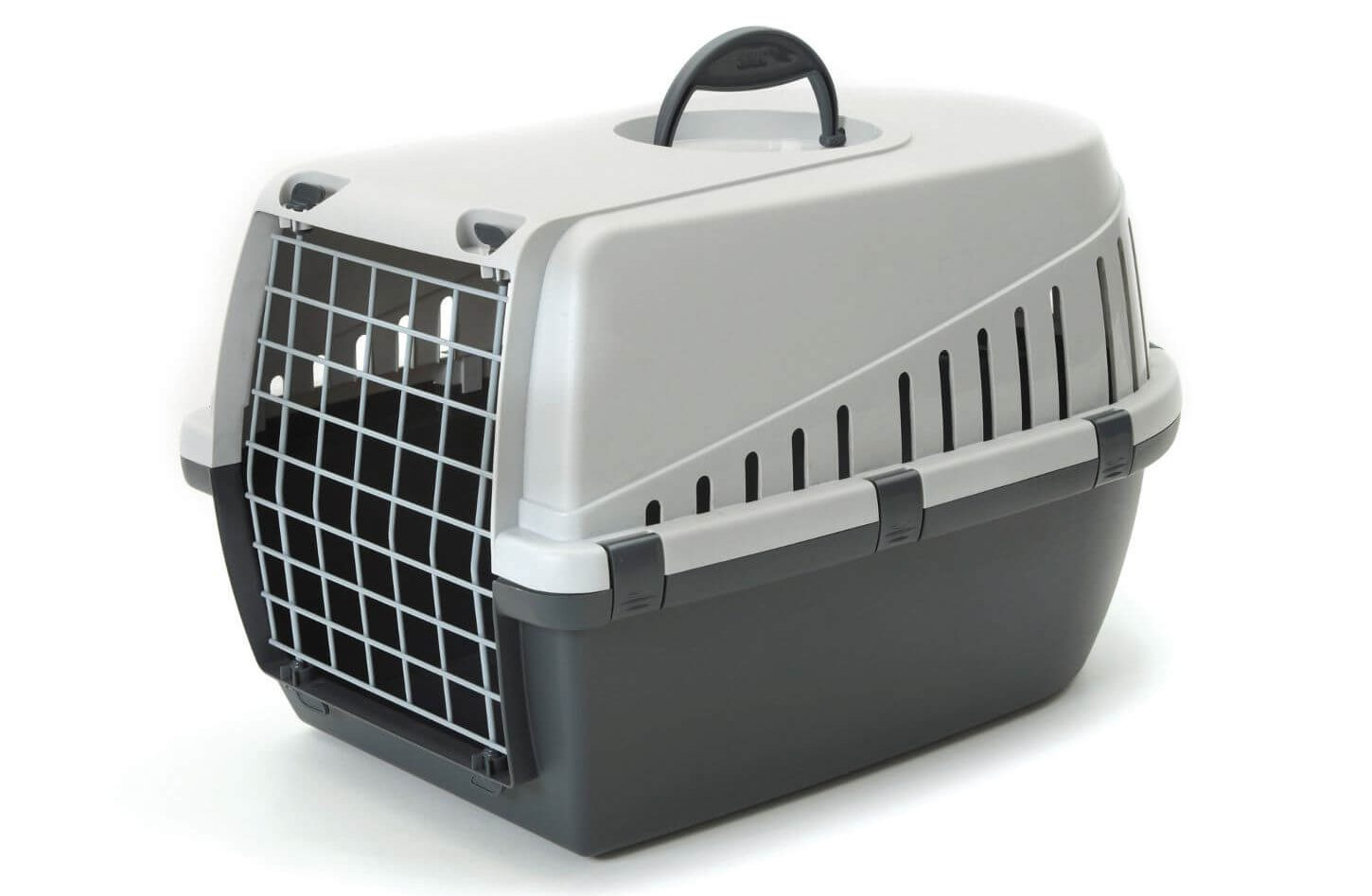 chicken carrier
