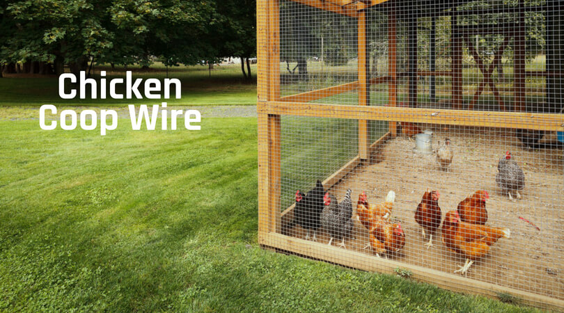 Best Wire For Chicken Coop Amp Fencing Top Reviews Of 2019